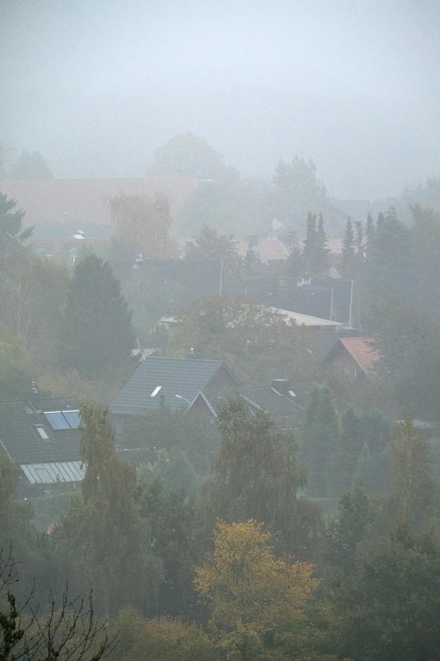 (©) Ralf Krabsch - Nebelstimmung