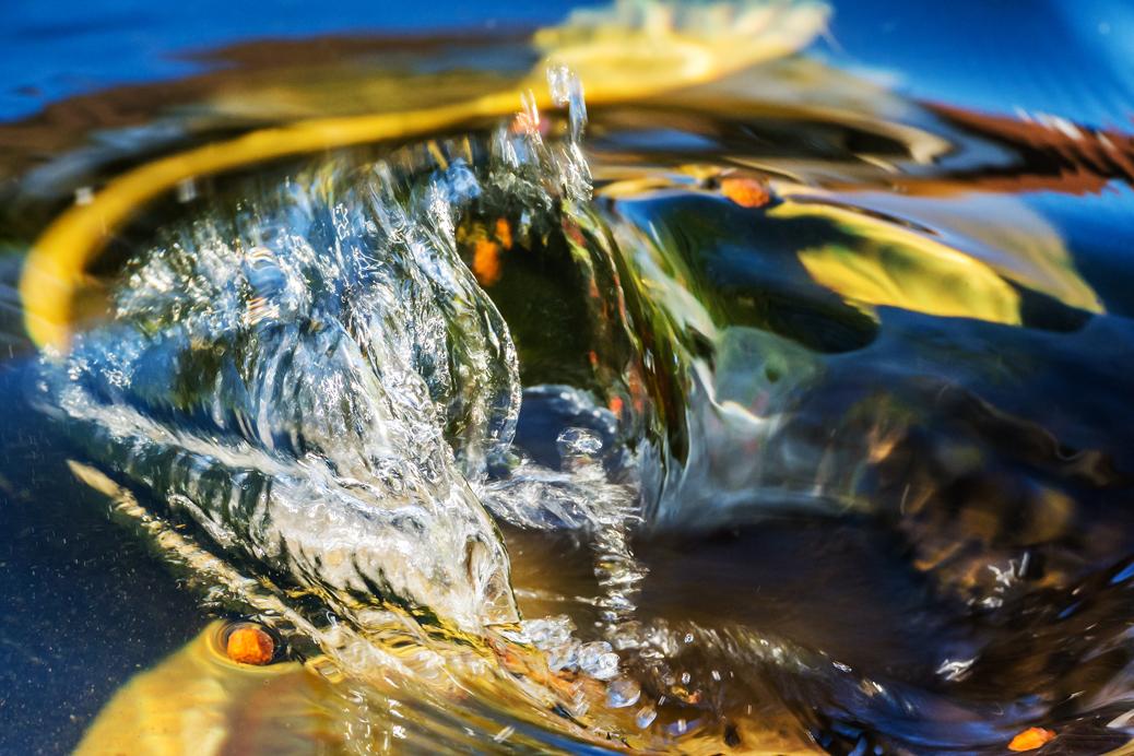 (©) Rolf Zipf-Marks - Wasser