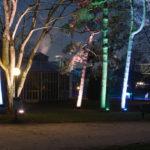 Winterlichter, Frankfurt Palmengarten